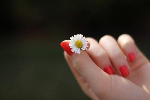 hand-302802_1280