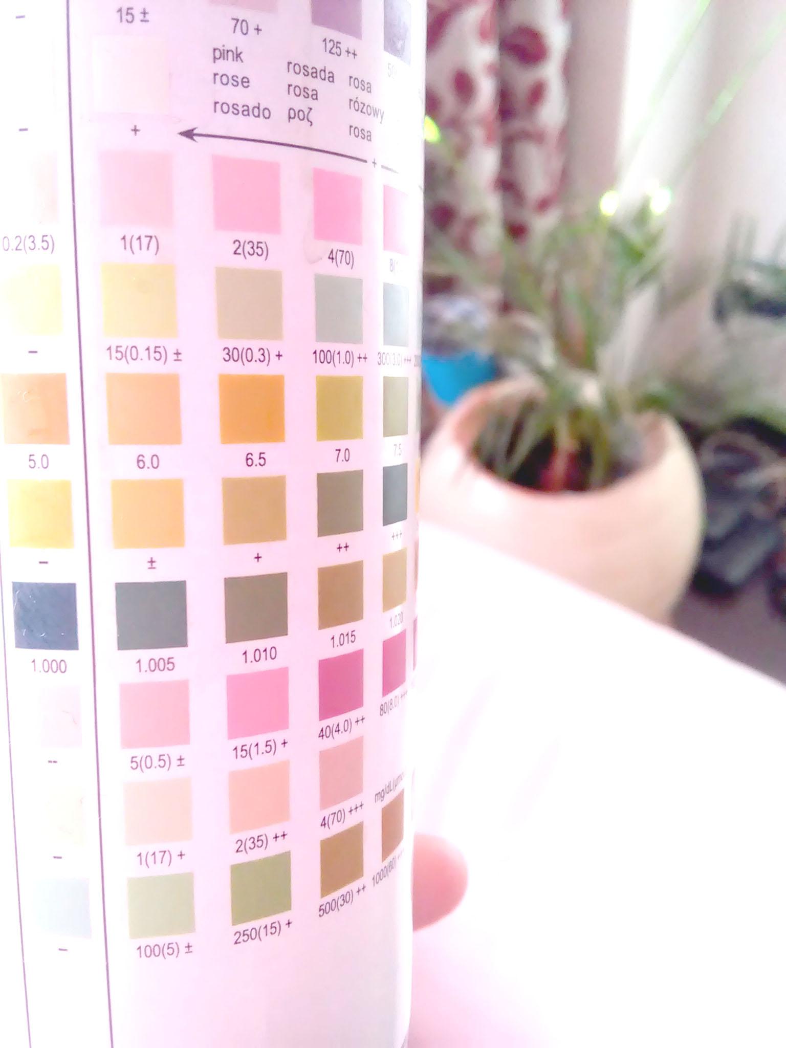 Hay paletas de colores que es mejor no conocer