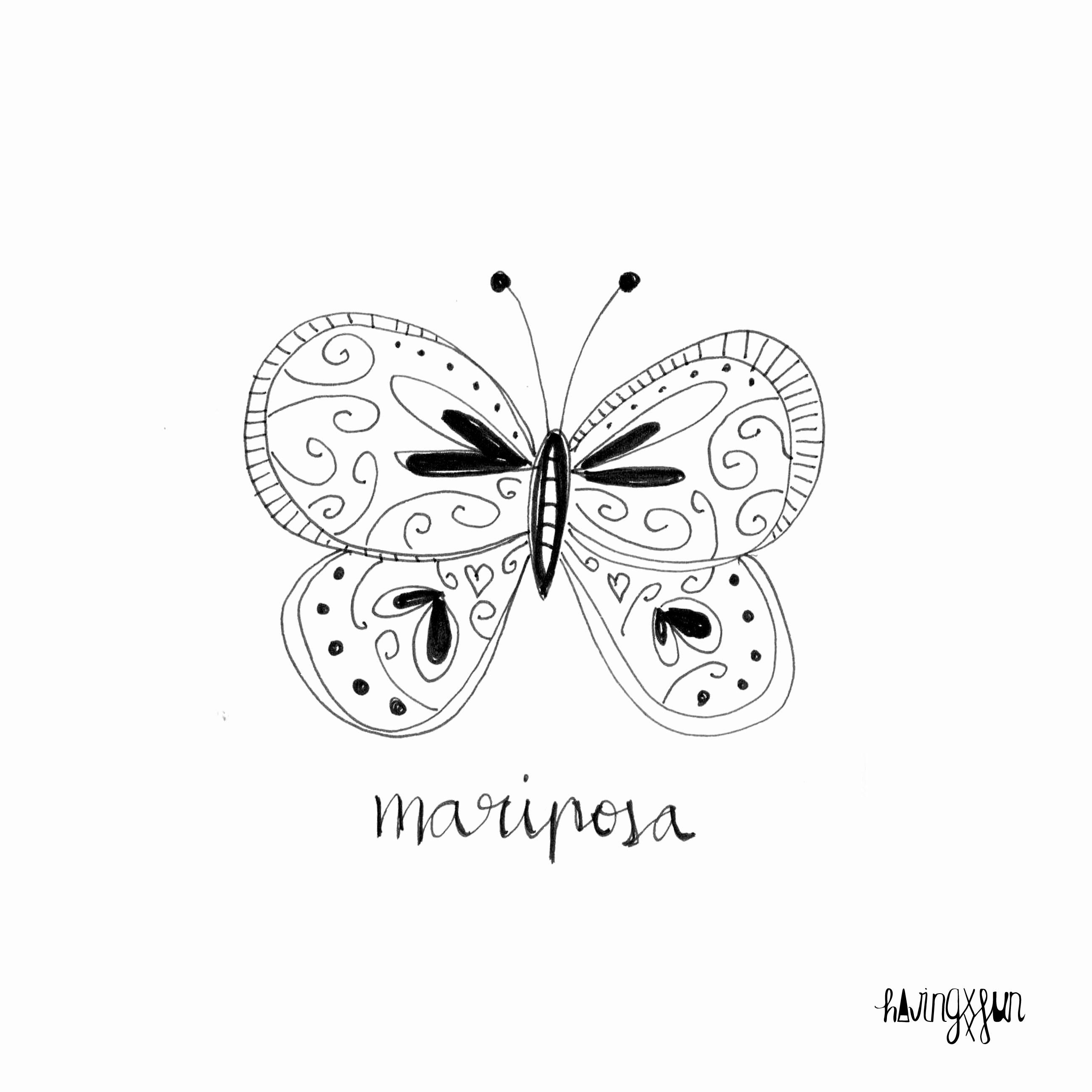 doodle mariposa