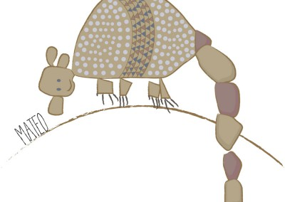 Ilustracion-armadillo